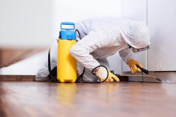 home service-pest control